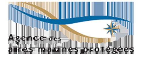 logo_AAMP