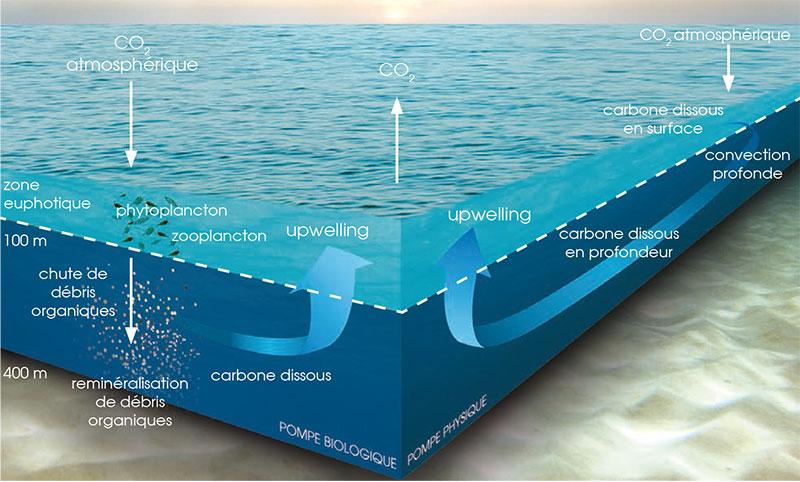 Plateforme Océan et Climat