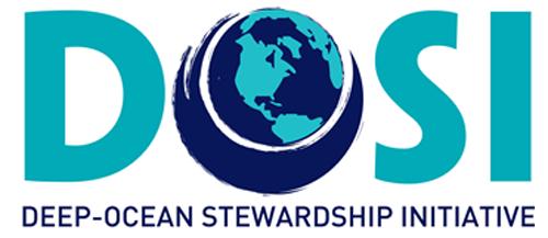Logo DOSI